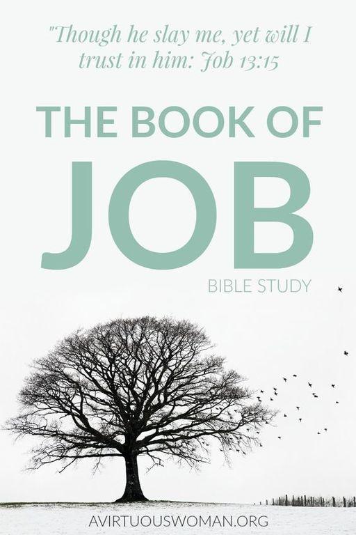 mejores-libros-biblia-job
