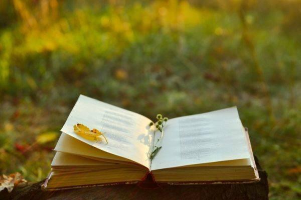 libros-defreds-mujer-taza-libro-aire-libre-istock