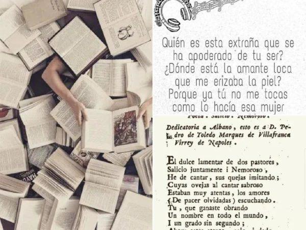 Subgénero literarios