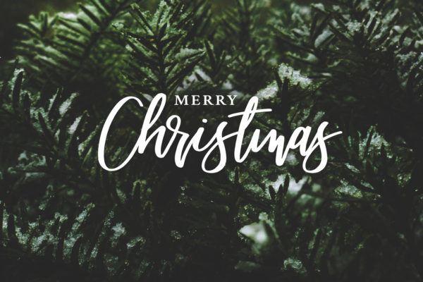 Mensajes de Navidad 2020 2021 para mandar merry christmas sobre fondo arbol
