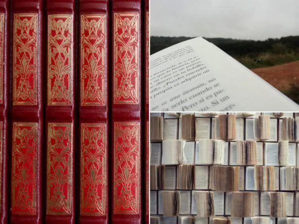 Géneros literarios neoclásicos