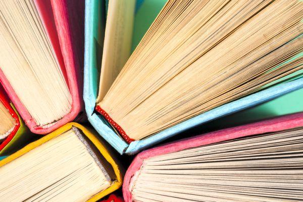 Generos literarios neoclasicos caracteristicas libro pastas de colores