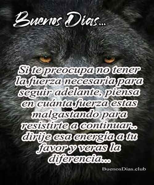 Mensaje de Buenos días lobo