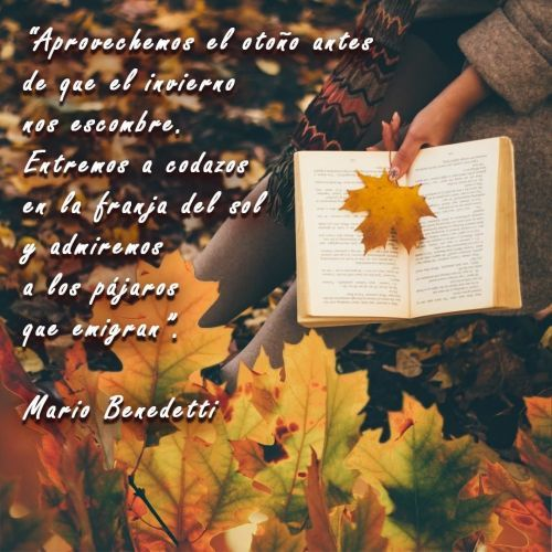 Frase de otoño Instagram