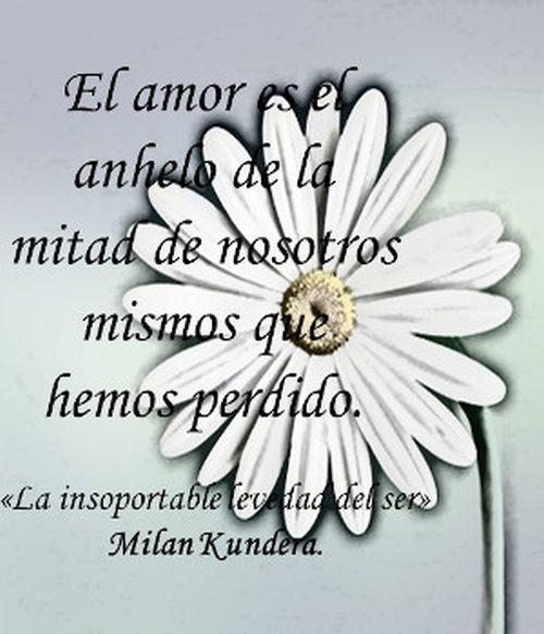 Frase de Milan Kundera