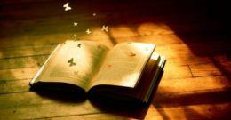 La Novela y los elementos que la componen