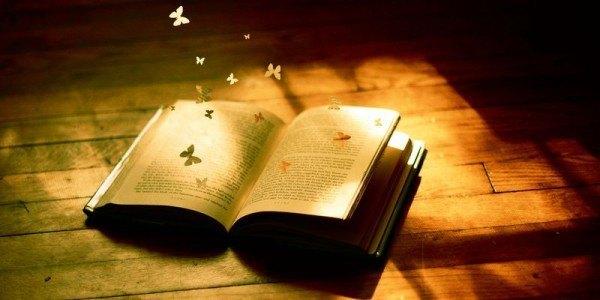 la-novela-y-los-elementos-que-la-componen