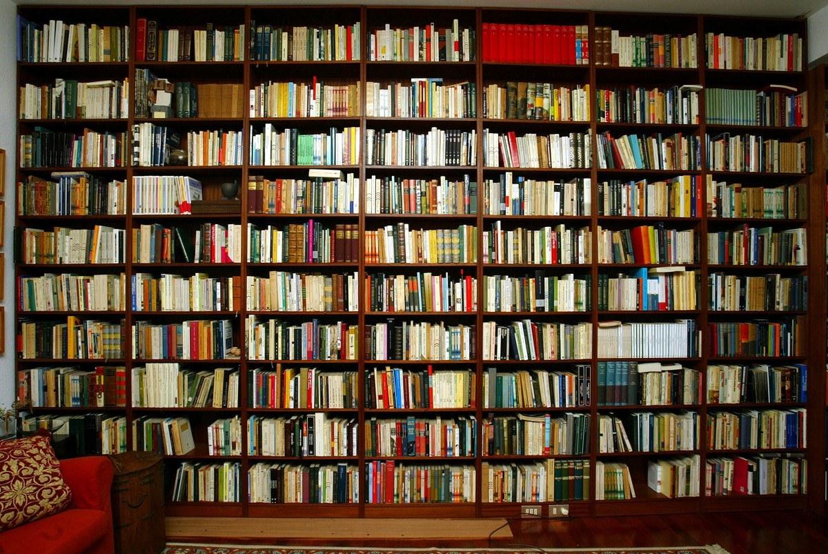 Biblioteca for Estanterias para libros