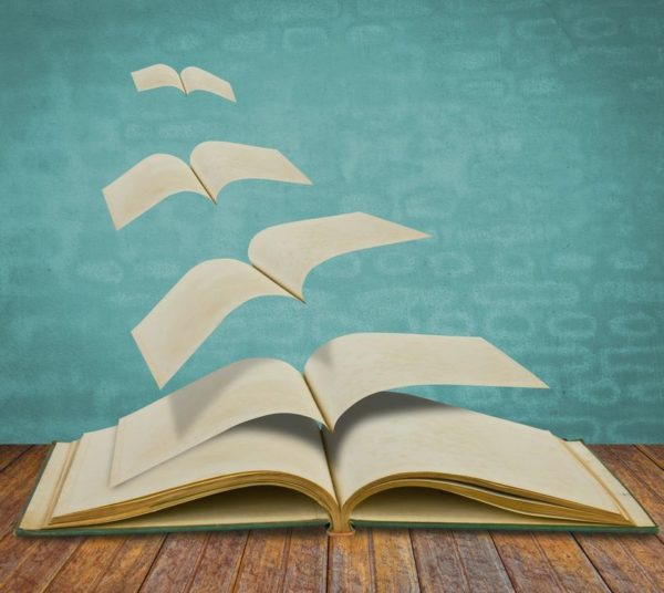 la-novela-y-su-definicion