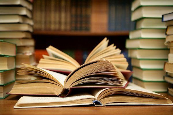 Tipos De Texto Y Sus Características Texto Descriptivo