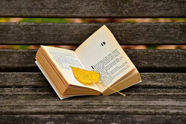 la-novela-y-los-elementos-que-la-componen3