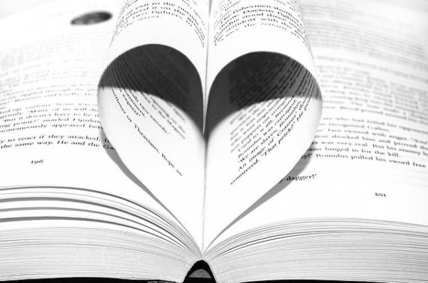 la-novela-y-los-elementos-que-la-componen4