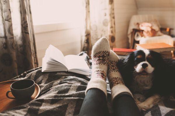 mejores-libros-cuarentena-mujer-lee-calcetines-perro-y-cafe-istock